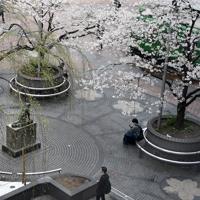 週末にも関わらず、人出が少ないJR渋谷駅前。ハチ公像の周りでも待ち合わせの人の姿がほとんどなかった=東京都渋谷区で2020年3月28日午前10時27分、竹内紀臣撮影