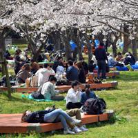 例年より人出が少ない舞鶴公園で花見を楽しむ来園者たち=福岡市中央区で2020年3月29日午後1時41分、森園道子撮影
