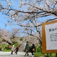 5分咲きとなった桜の下に設置された宴会自粛を呼びかける張り紙=福岡市中央区の西公園で2020年3月29日午前11時10分、須賀川理撮影