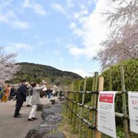 宴会の自粛やマスクの着用を促す張り紙もあちこちに見られた=京都市東山区で2020年3月29日午後1時8分、川平愛撮影
