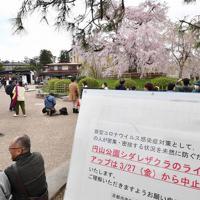 出店の出店も無く、ライトアップも中止された=京都市東山区で2020年3月29日午後1時24分、川平愛撮影
