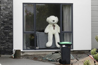In this March 30, 2020, photo, a teddy bear sits in a window of a house in Christchurch, New Zealand. New Zealanders are embracing an international movement in which people are placing teddy bears in their windows during coronavirus lockdowns to brighten the mood and give children a game to play by spotting the bears in their neighborhoods. (AP Photo/Mark Baker)