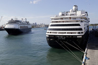 Carnival's Holland America cruise ship Rotterdam, left, arrives at Port Everglades as the Zaandam, right, is docked during the new coronavirus pandemic, on April 2, 2020, in Fort Lauderdale, Fla. (AP Photo/Lynne Sladky)