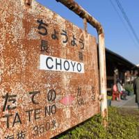 熊本地震から間もなく4年。長陽駅は不通区間となっても、のどかな雰囲気を求めてホームを訪れる人がいる。駅前に住む女性は「列車は走らなくても駅や桜を見に来てもらえるのはうれしいこと。この地域のシンボルのようなものですから」と話した=熊本県南阿蘇村で2020年4月7日、津村豊和撮影