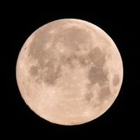 夜空で輝く満月=福岡県福津市の宮地嶽神社で2020年4月8日午前5時10分、須賀川理撮影