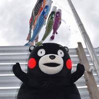県庁屋上に掲げられたこいのぼりにご満悦の様子のくまモン=熊本市中央区の県庁で2020年4月23日午前10時9分、城島勇人撮影