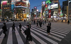 緊急事態宣言の発令から2週間、人通りが減った渋谷駅前のスクランブル交差点=東京都渋谷区で2020年4月21日、長谷川直亮撮影