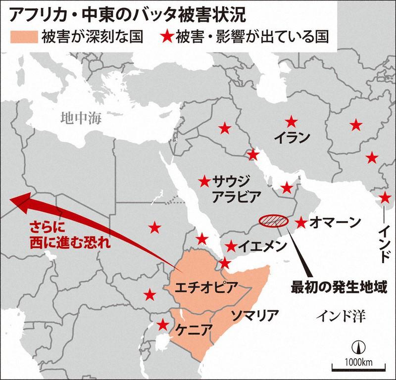 発生 地図 大量 バッタ 2020 中国・湖北省、雲南省でもバッタが大量発生 食料危機の恐れが迫る