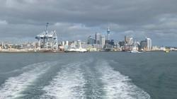 ニュージーランドの対策は早かった(最大の都市オークランド、2015年3月、筆者撮影)
