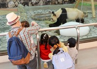 A family looks at a giant panda at Adventure World amusement park, which partly resumed operations after closing due to the novel coronavirus pandemic, in Shirahama, Wakayama Prefecture, on May 21, 2020. (Mainichi/Takao Kitamura)
