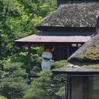 国宝・彦根城の大名庭園にある茶室の縁側に登場したひこにゃん=滋賀県彦根市金亀町で2020年5月23日午後1時20分、伊藤信司撮影