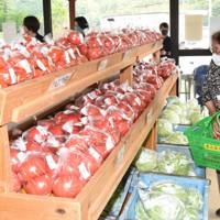 新鮮な野菜が並ぶ大津緑洋高の「農高夢市場」