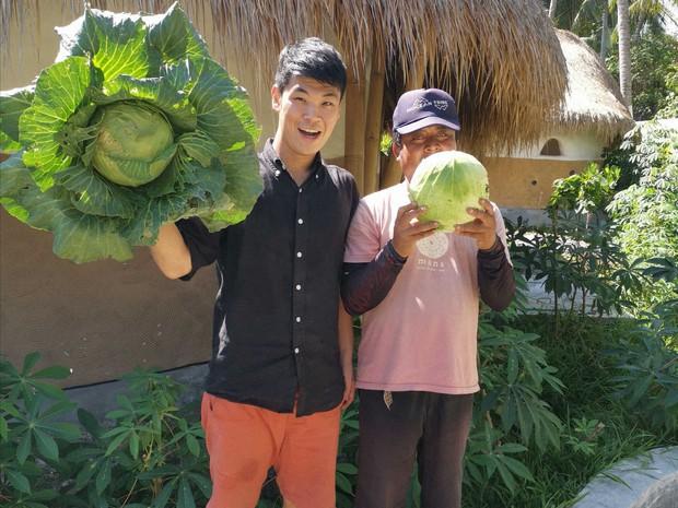 エシカルホテルでは、オーガニック野菜を栽培しています=筆者提供