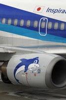 A picture of a dolphin is seen on one of the engines of an ANA Boeing 737-500, affectionately known as