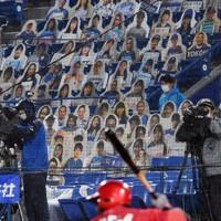 無観客で行われたDeNA対広島戦で、客席に並べられたファンの写真パネル=横浜スタジアムで19日、北山夏帆撮影