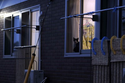 福島県富岡町が避難者のために大玉村玉井横堀平に用意した仮設住宅。入居率は約3割にとどまる=2011年7月7日午後7時すぎ、小林努撮影