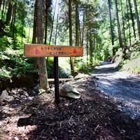アジサイ道が終わり、登山道にさしかかる所に設置された「もうすぐ半世紀!もっと素敵な山へ」と書かれたプレート。南澤さんの目標はこれからも続く=東京都あきる野市で2020年6月10日、滝川大貴撮影