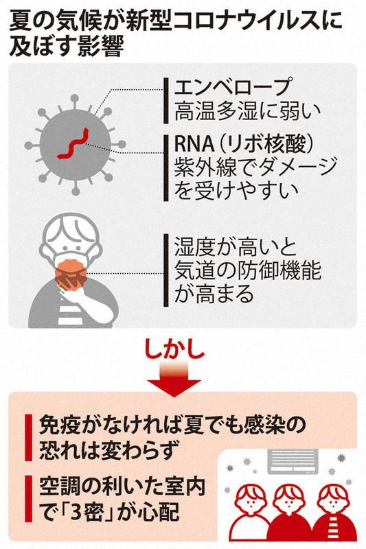 免疫 と は 集団