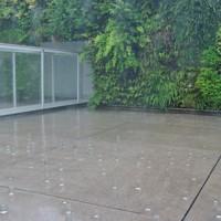 中庭に置かれた大小のガラス瓶がそぼ降る雨を受け止める=金沢市広坂1の金沢21世紀美術館で2020年6月26日、青山郁子撮影
