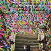 奉納され、境内で涼やかな音を響かせる風鈴=福岡県小郡市の如意輪寺で2020年6月29日、田鍋公也撮影