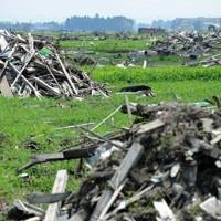 雑草が生い茂った水田跡に残されたがれき=仙台市若林区で2011年7月10日、津村豊和撮影