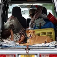 飼い犬のために避難所の駐車場に停めた車の後部座席で過ごす女性(左)=熊本県球磨村で2020年7月5日午前10時35分、幾島健太郎撮影