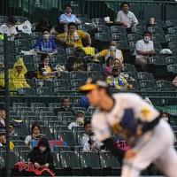 【阪神―DeNA】観客を入れて行われたプロ野球阪神―DeNA戦。ソーシャルディスタンスを保ち、約5000人が観戦した=阪神甲子園球場で2020年7月10日、山崎一輝撮影