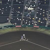 【阪神―DeNA】観客を入れて行われた阪神―DeNA戦=阪神甲子園球場で2020年7月10日午後6時4分、本社ヘリから