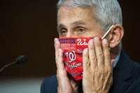 Director of the National Institute of Allergy and Infectious Diseases Dr. Anthony Fauci adjusts his face covering during a Senate Health, Education, Labor and Pensions Committee hearing on Capitol Hill in Washington, Tuesday, June 30, 2020. (Al Drago/Pool via AP)