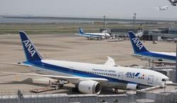 羽田空港に並んだ全日空機=2019年5月10日、米田堅持撮影