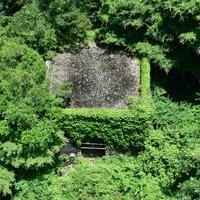 河内貯水池のえん堤から下流域をのぞきこむと、今は使われていない弁室が草木に覆われていた=北九州市八幡東区で2020年6月16日、須賀川理撮影