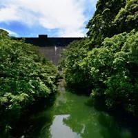 下流域からみた河内貯水池のえん堤=北九州市八幡東区で2020年6月16日、須賀川理撮影