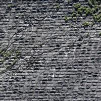 高さ約43メートルのえん堤の前後面は石積み。工事のほとんどが人力だった=北九州市八幡東区で2020年6月16日午後0時49分、須賀川理撮影
