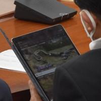 衆院内閣委員会中に自身で持ち込んだタブレットを閲覧する平井卓也・前科学技術担当相。ワニが大蛇に襲われる動画などを約5分見続けた=2020年5月13日、大場弘行撮影