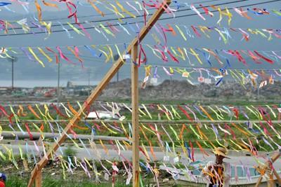 津波で使えなくなった水田につるされた1000本のリボン=岩手県陸前高田市で2011年8月3日、大西岳彦撮影