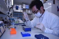 PCR検査を実施するため、検体の処理を行う東京慈恵会医科大PCRセンターの職員=東京都港区で2020年7月14日午後3時42分、島田信幸撮影