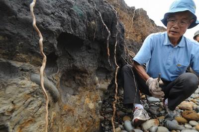 巨大津波の痕跡が残るとみられる地層。平川一臣・北海道大特任教授(右)によると左下の白っぽい層は4000~5000年前の津波でできた。石や砂は津波で海から運ばれたという=宮城県気仙沼市で2011年8月20日、丸山博撮影