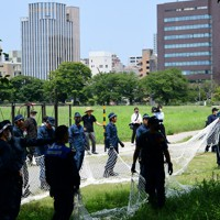 イノシシの潜む茂みに近づく捜査員ら=福岡市中央区で2020年8月5日午前11時49分、須賀川理撮影