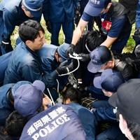 捕獲したイノシシを押さえ込む機動隊員ら=福岡市中央区で2020年8月5日午前11時53分、須賀川理撮影