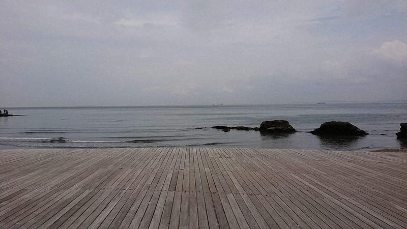 神奈川県横須賀市、観音崎付近から眺めた東京湾。2019年4月に取材で訪れ、ダウンして座り込んだベンチから撮ったものだ。母もこの海を眺めながら歩いてくれているのかと感慨深かった=倉岡一樹撮影