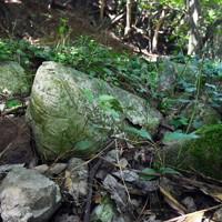津和瀬砲台前で、外装が劣化し中身だけが袋の形のまま残ったコンクリート=福岡県宗像市で2020年8月16日、森園道子撮影