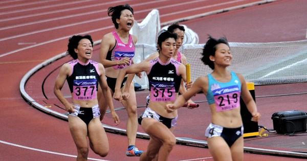 陸上インカレ 新潟で開幕 実力者、勢ぞろい 1200人参加 女子 ...
