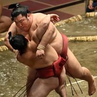 炎鵬(手前)を寄り倒しで降した徳勝龍=東京・両国国技館で2020年9月14日、大西岳彦撮影