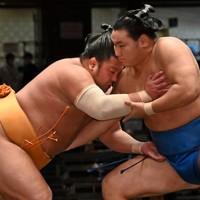 豊昇龍(右)を寄り倒しで破った旭大星=東京・両国国技館で2020年9月15日、大西岳彦撮影