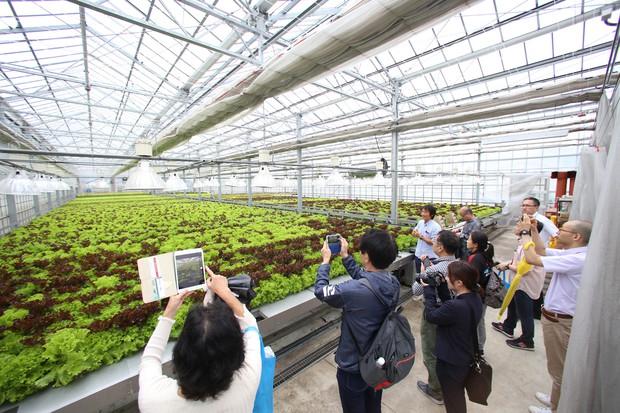 熊本県南阿蘇村の「阿蘇ファームランド」で野菜工場を視察する参加者(丸の内プラチナ大学提供)