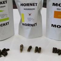 発売された昆虫食。左からコオロギ、オオスズメバチ、オケラ=長崎県佐世保市役所で2020年9月14日、綿貫洋撮影