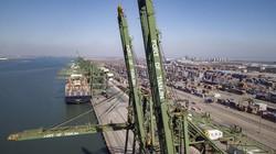 海運ブームでにぎわう中国の天津港 Bloomberg