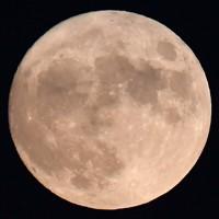 中秋の名月=福岡市西区で2020年10月1日午後6時半、須賀川理撮影