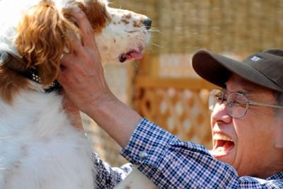 約半年ぶりに再会した震災の被災地で保護された犬と飼い主=大阪府能勢町で2011年10月7日午前10時51分、小松雄介撮影