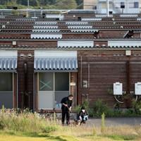 台風19号から1年。東日本大震災の際に建設された仮設住宅で、愛犬を散歩させる大沼五木さん(左)と妻祐子さん。入居者は少なく、雑草も背を伸ばしていた=福島県本宮市で2020年10月4日、小川昌宏撮影